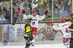 04.11.2018 ERC Bulls Sonthofen vs. Selber Woelfe